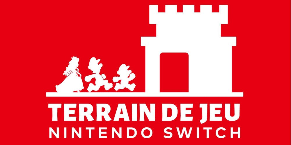 terrain de jeu nintendo switch